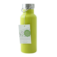 Insulated Stainless Steel Drinks Bottle 500ml - Lime