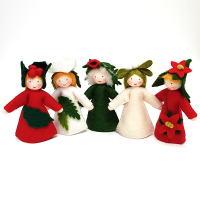Ambrosius Winter Flower Fairy Set