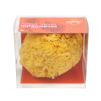 Förster's Natural Sea Sponge