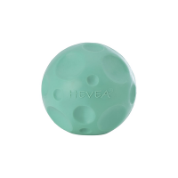 Hevea Pet Moon Ball Activity Toy - Pale Mint